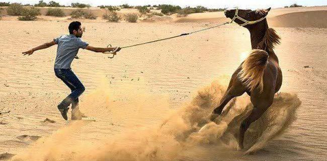 گردشگری با اسب و گردشگری درکویر دوبال رونق گردشگری